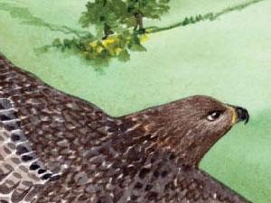 Chelan-Douglas-Natural-History-1-thumb