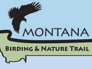 MT-Birding-Nature-Trail-thumb