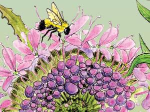 PollinatorPanel_thumb