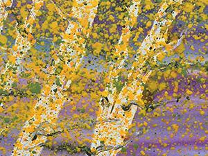 Wild-Aspens-II_36x24_Seiler16-thumb